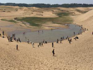 鳥取砂丘 泉 湖 池
